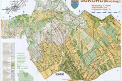 Sukoro_1996-scaled